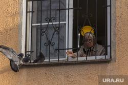 Клипарт. Магнитогорск, пенсионерка, бабушка, кормление, голуби на окне