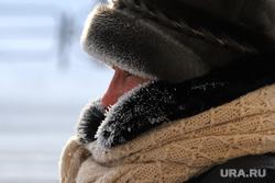 Мороз. Курган, зима, мороз, холод
