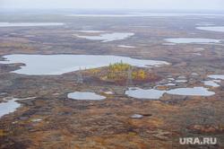 Природа Ямало-Ненецкого автономного округа, север, тундра, арктика, озеро, водоем, ямал, природа ямала, вид сверху, осень, с квадрокоптера