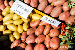 Областная агропромышленная выставка «АГРО-2019». Продукты питания. Челябинск, овощи, продукты, картошка, еда, потребительская корзина