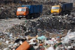Полигон ТБО и цех сортировки. «Спецавтобаза». Екатеринбург, мусор, спецтехника, грузовики, мусоровоз, гора, отходы, хлам, спецавтобаза, куча, окружающая среда, свалка, экология, отбросы, помои