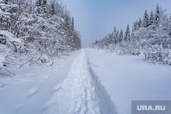 Зимняя природа. Урал, зима, зимний лес, тропинка в снегу, северный урал, зимний урал, урал зимой
