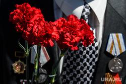 Костюмированная автоколонна и воздушный парад ко Дню Победы. Екатеринбург, гвоздика, ветеран, день победы