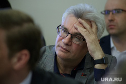 Заседание градостроительного совета на тему развития городской эспланады. Пермь , грибанов алексей