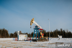 Клипарт. Сургут, газ, топливо, нефть, качалка, задвижка, месторождение, нефтедобыча, добыча нефти, черное золото, природные ресурсы, скважина, лукоил, сургутнефтегаз, куст нефтегазовый, цены на нефть, винтиль, недрапользователи