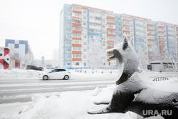 Февральские морозы. Сургут, город сургут, черный лис