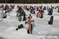 Подборка фотографий в период самоизоляции 28.04.20 в Перми, крест, могила, кладбище, северное кладбище пермь