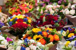Цветочные магазины. Екатеринбург, растение, 8марта, цветочный магазин, цветы