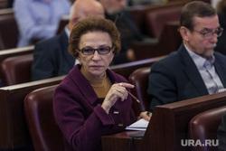 Заседание комитета по правам человека, посвященный обсуждению НКО. Москва, совет по правам человека, морщакова тамара