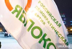 «Вахта памяти», годовщина гибели Немцова, флаг, партия яблоко