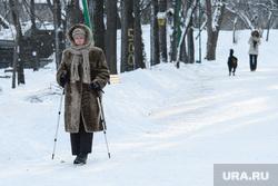 Виды Екатеринбурга, зима, парк, скандинавская ходьба, прогулка в парке