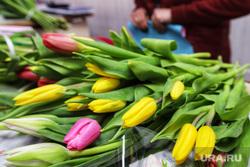 Цветы. Дети. Пенсионеры. Курган, букет, праздник весны, цветы, 8 марта