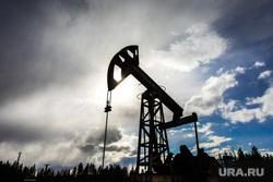 Качалки. Сургут, газ, газпром, топливо, роснефть, качалка, экономика, нефть, месторождение, нефтедобыча, добыча нефти, черное золото, природные ресурсы, лукоил, сургутнефтегаз, куст нефтегазовый, цены на нефть
