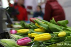 Цветы. Дети. Пенсионеры. Курган, тюльпаны, букет, цветы, продажа цветов
