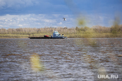 Природа ХМАО. Сургут, судоходство, корабль, баржа, обь, река, теплоход