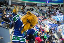 Хоккей Югра-Автомобилист. Ханты -Мансийск, трибуны, хк югра, мамонт, пархом, маскот