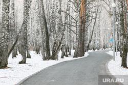 Гилевская роща. Тюмень, снег, деревья, парк, дорога, дорога в лесу, роща, гилевская роща