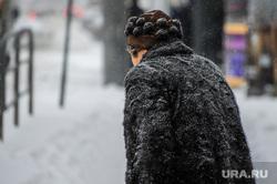 Снегопад, зима. Челябинск, снег, пенсионер, пешеход, снегопад, зима, люди, женщина, дорога, пожилой человек