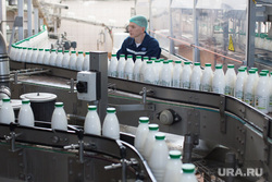40-летний юбилей молочного комбината «Шадринский». Шадринск, молоко, конвейер