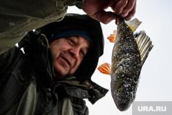 Профилактическая акция «Тонкий лед» на озере Шарташ. Екатеринбург, зимняя рыбалка, улов, окунь, рыба, отдых горожан, рыбалка