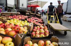 Мигранты, задержанные на 4 овощебазе. Екатеринбург, фрукты в ящиках, овощебаза4, яблоки, продуктовый рынок