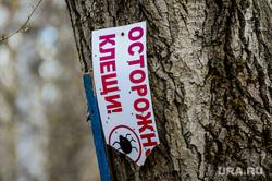 Акарицидная (от клещей) обработка территории Успенского кладбища. Челябинск, клещи, осторожно клещи