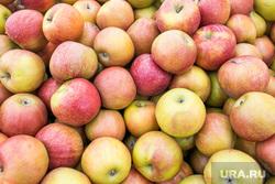 Продукты, овощи и фрукты. Тюмень, торговля, фрукты, яблоки