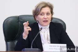Совещание в полпредстве с главами регионов УрФО по экологии. Екатеринбург, попова анна
