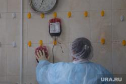 Депутат областной думы Александр Ильтяков в центре переливания крови. Курган , медицинский персонал, кровь из вены, центр переливания крови