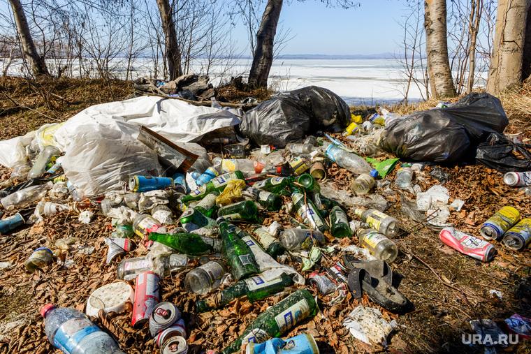 Министерство экологии провело рейд по территориям баз отдыха и туристических зон. Челябинск
