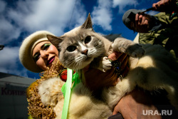 Парад в честь Дня Святого Патрика на Арбате. Москва, праздник, кошка, прогулка, кот, арбат, гуляния, котик, карнавал, шествие, день святого патрика