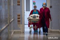 Хирургическая операция с помощью роботизированного ассистента в ГКБ №40. Екатернибург, госпиталь, больной, каталка, больничный коридор, медперсонал, операция, лечение, медицина, хирургическое отделение, клиника, санитары, больница, медицинское учреждение, пациент, каталка больничная