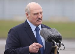 Лукашенко Александр, лукашенко александр