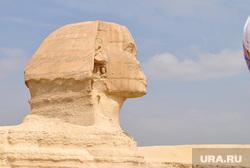 Клипарт, сфинкс, египет, Каир