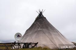 ЯНАО. Тундра + досрочные выборы, чум, спутниковая тарелка, тундра, арктика