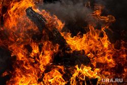 Практические учения по ликвидации природного пожара. Свердловская область, село Сипавское, пожар, пламя, огонь, возгорание, горит трава, горит лес, горит