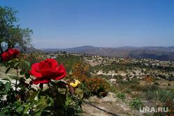 Кипр, роза, природа, гора, кипр