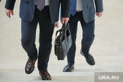 Владимир Жириновский. Москва, политик, чиновник, портфель, политика, портфели депутатов, министр, портфель министра
