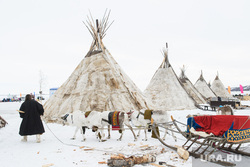 День оленевода в селе Аксарка, ЯНАО, чум, север, арктика, чумы, кмнс