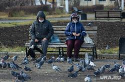 Клипарт. Магнитогорск, город, отдых, пенсионеры, кормление голубей, защитные маски