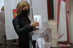Выборы губернатора. Пермь 2020, избиратель, бюллетень, выборы 2020