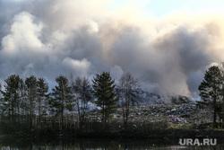 Лесные пожары. Курган, тбо, лесной пожар, шуховский полигон