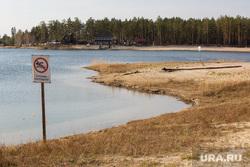 Пляж на Муллашах. Тюмень, пляж, купание запрещено, озеро, водоем, пляжный сезон, муллаши