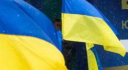 Юлия Тимошенко, флаги украины, тимошенко юлия
