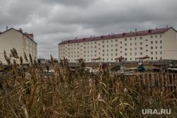Жилые дома, построенные по программе переселения из ветхого и аварийного жилья. Курган, камыши, жилые дома, 11 микрорайон дом 6 и 7