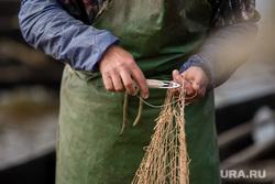Добыча рыбы в Сургутском районе. Сургут, сеть, невод, челнок, ремонт сети