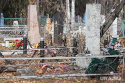 Рябковское кладбище. Курган, заброшенная могила
