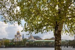 Весна в Екатеринбурге, набережная, город екатеринбург, береза, листва, солнечная погода, храм на крови, весна