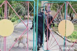 Эвакуация детей из детского сада. Курган, детский сад, собака кинолог, омон, эвакуация