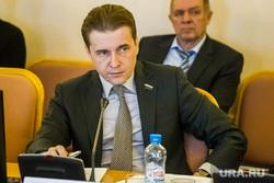 Заседание комитета по бюджету и финансам в Тюменской областной Думе. Тюмень, горицкий дмитрий